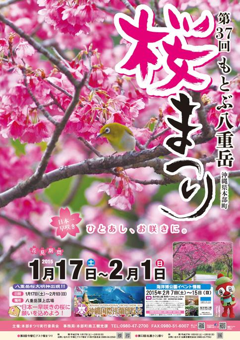 本部八重岳桜まつりイベント情報